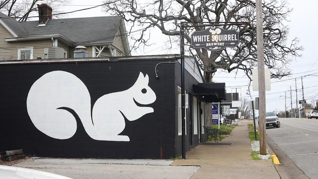 White Squirel