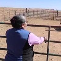 Navajo Covid
