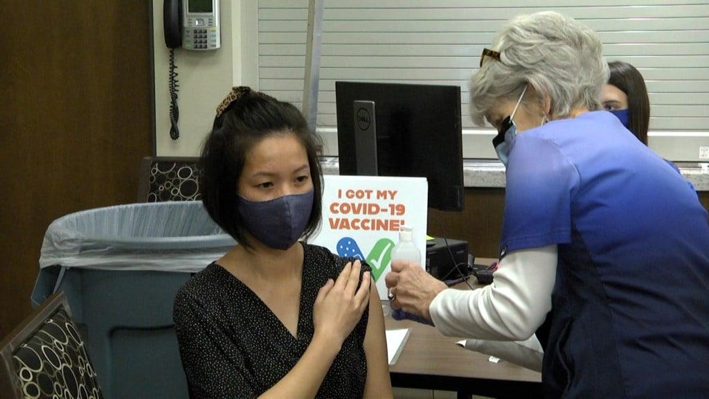 Burmese Vaccination Pic0