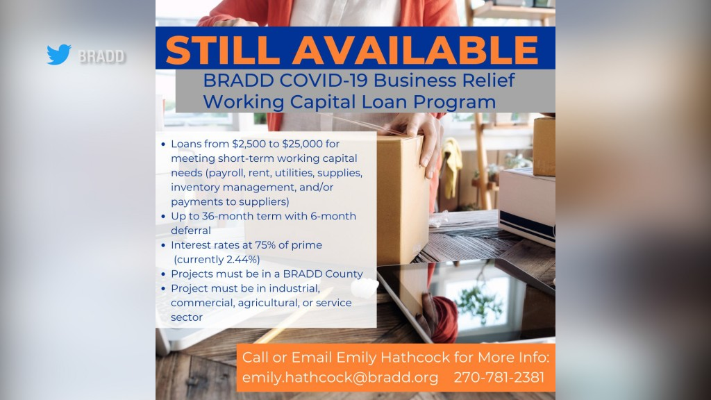 Bradd Limited Funding Pic Yes0