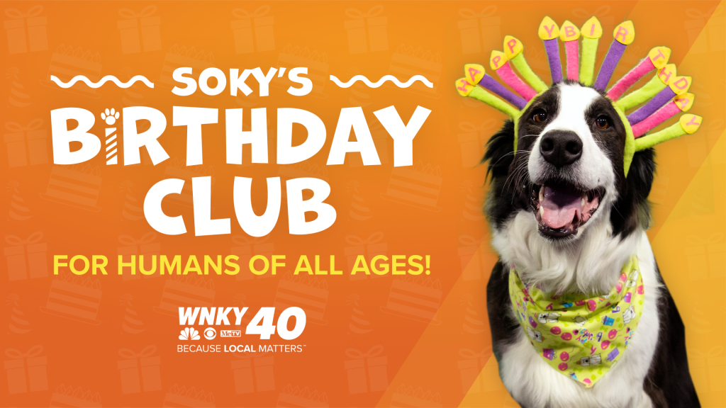 Sokys Birthday Club Feature Image