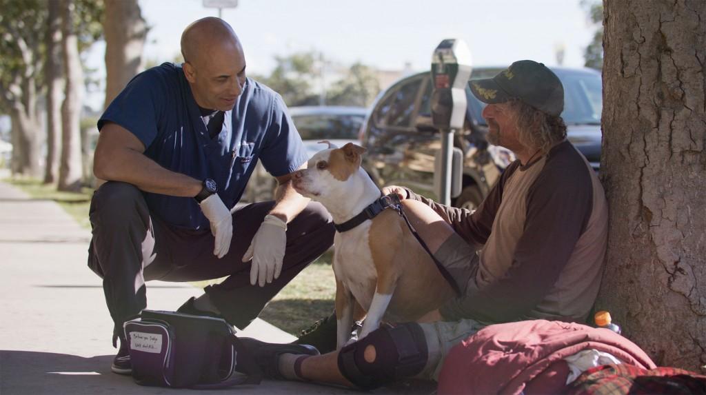 200227132511 Veterinario Ayuda A Mascotas De Personas Sin Hogar Gratis California Pkg Digital Original 00000000
