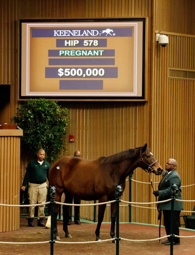 Roan Inish tops day 2 of Keeneland January Horses of All Ages Sale 1-12-16