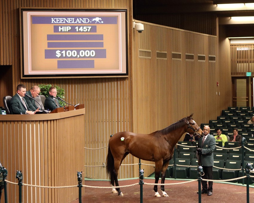 Dixie Victory tops day 4 of January Horses of All Ages Sale at Keeneland 1-12-17