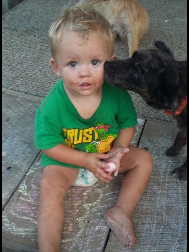Logain Chumbley missing toddler found safe Casey County 9-19-16