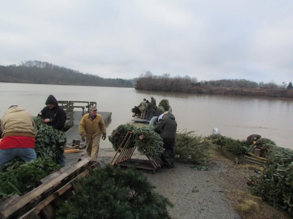 Christmas tree recycling fish habitat improvement fish and wildlife in Kentucky