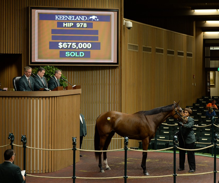 3-year old filly 'Don'tforgetaboutme' tops day 4 of November Breeding Stock Sale at Keeneland 11-5-15