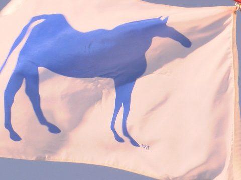 Community Flag
