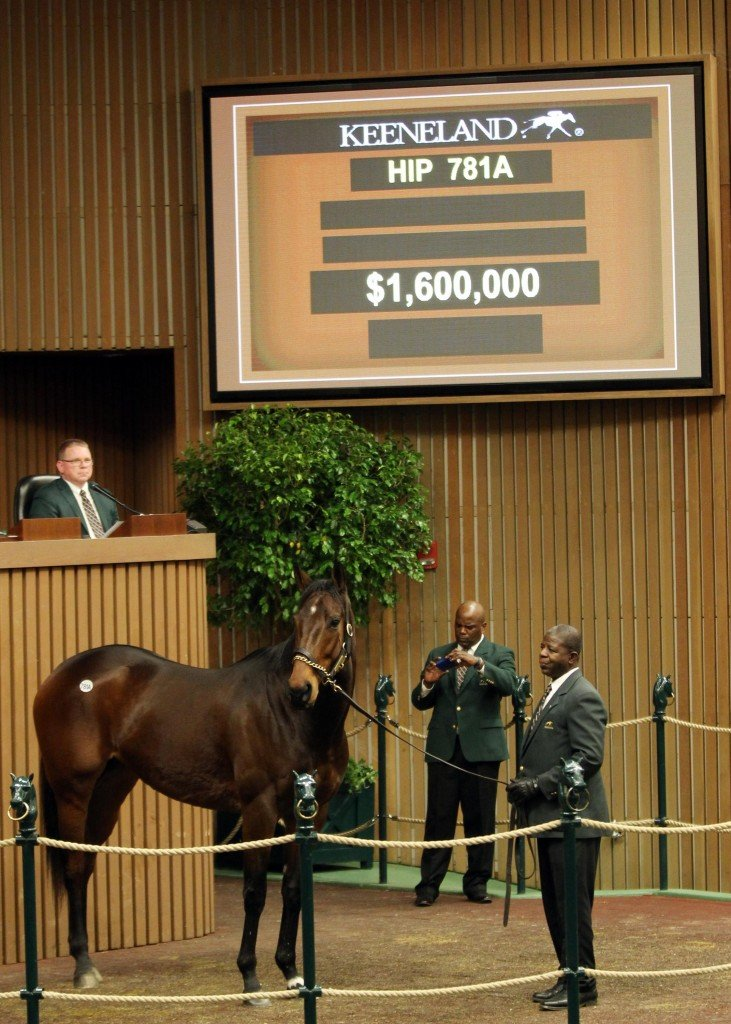 Mrs McDougal sells for $1.6 million to top day 2 of January Horses of All Ages Sale at Keeneland 1-9-18