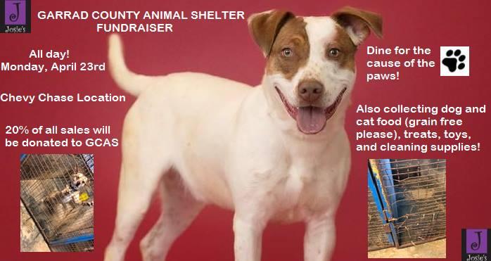 Josie's fundraises for Garrard Co. Animal Shelter