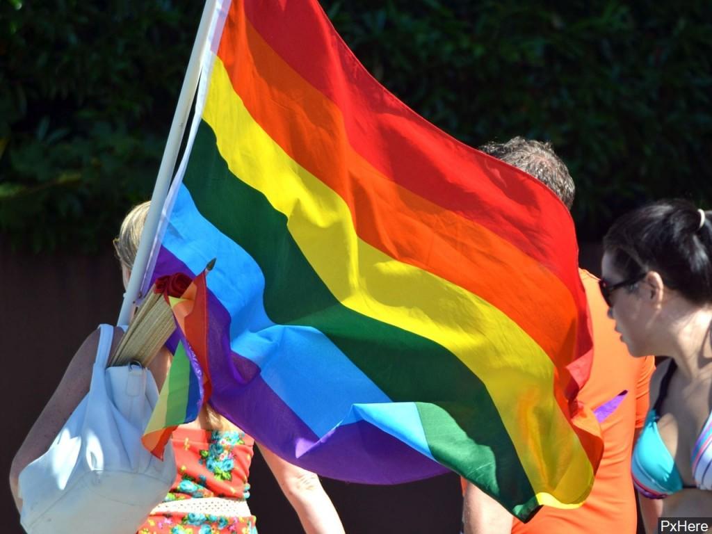 LGBTQ Flag via MGN Online