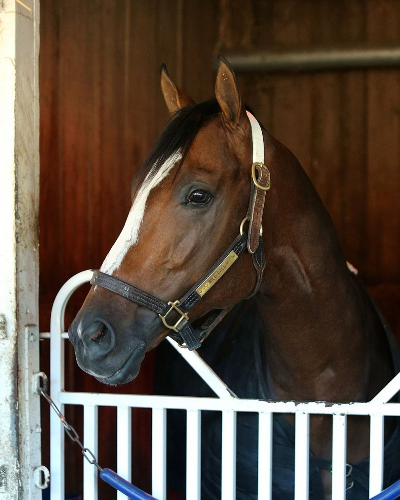 Pic from BloodHorse