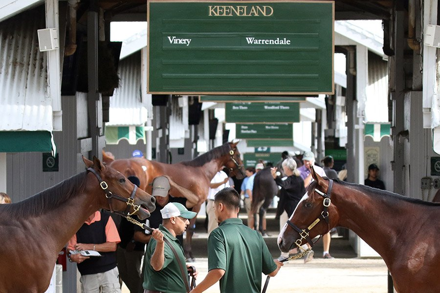 Keeneland September Yearling Sale 2018 outside at barn