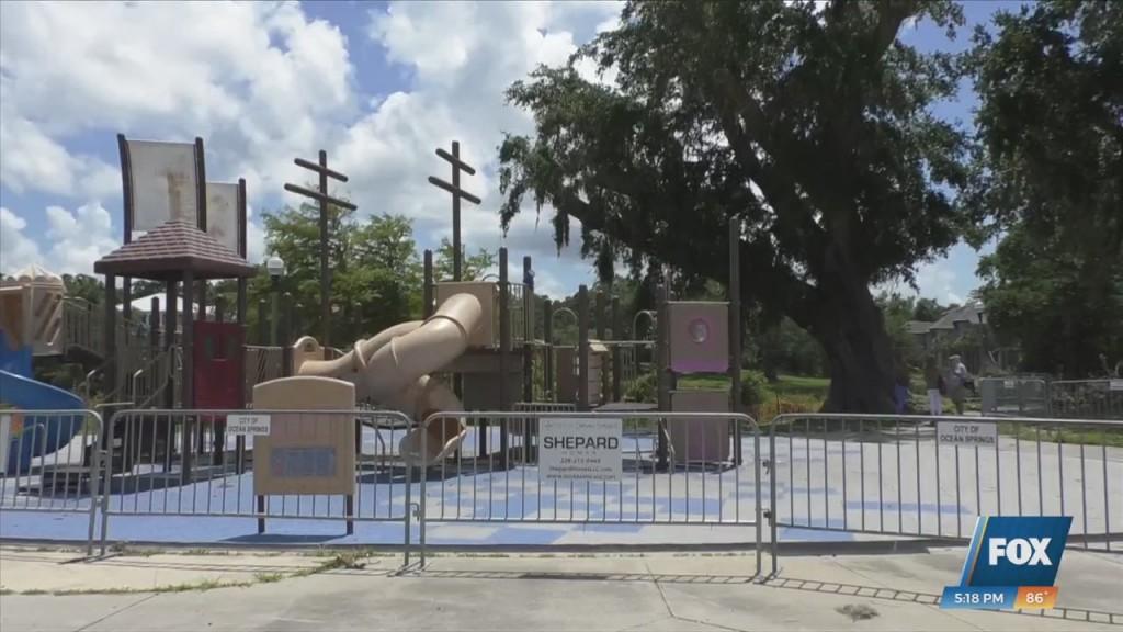 200 Year Old Oak Tree In Ocean Springs Causing Issues