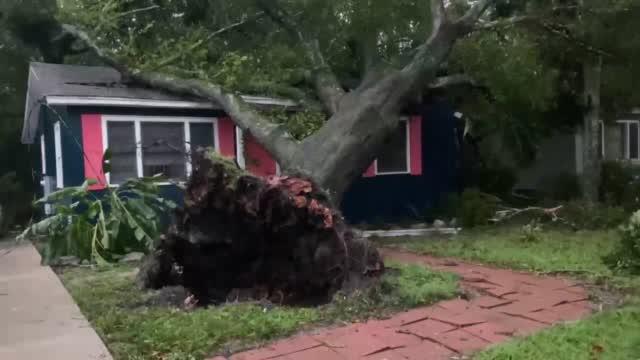 Possible Tornado Damage 1