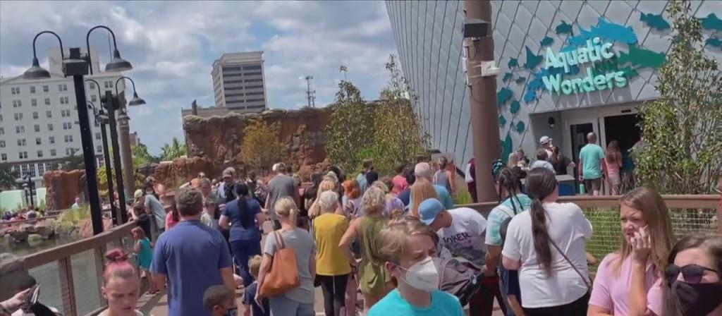 Mississippi Aquarium Reopens After Hurricane Ida