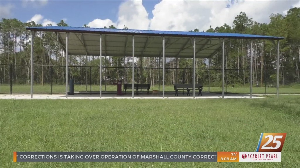 F.e.t.c.h Dog Park In Long Beach Finished Phase Two Of Construction