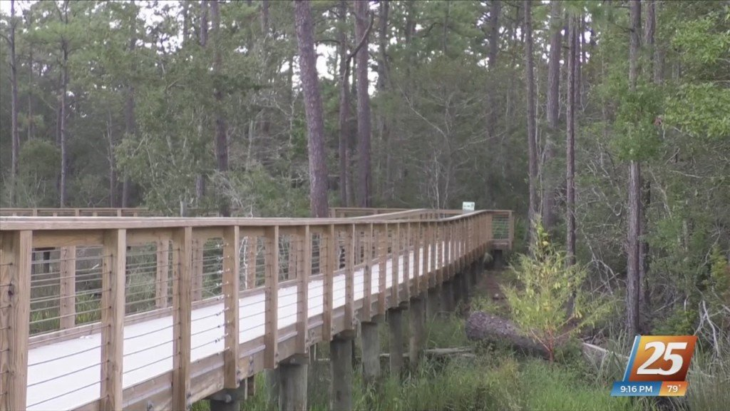 City Of Gautier Receives 'small Project Of The Year' Award For Shephard State Park