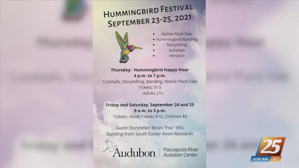 Hummingbird Festival Thursday Through Saturday