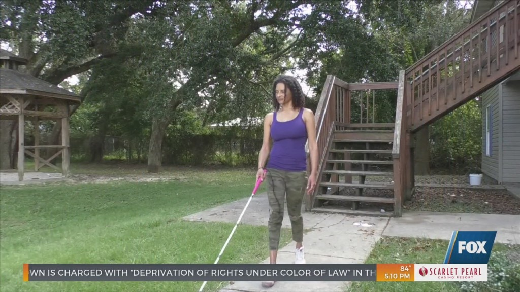 National White Cane Day