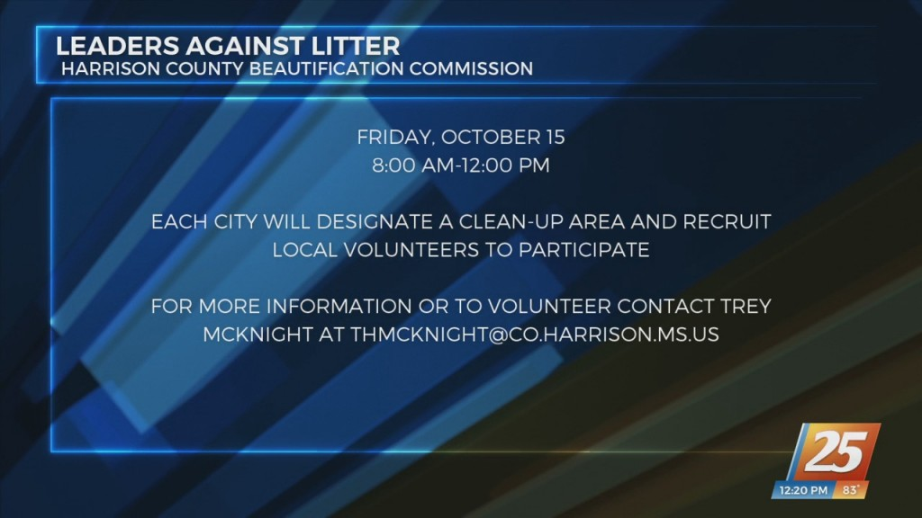 Leaders Against Litter Cleanup Project