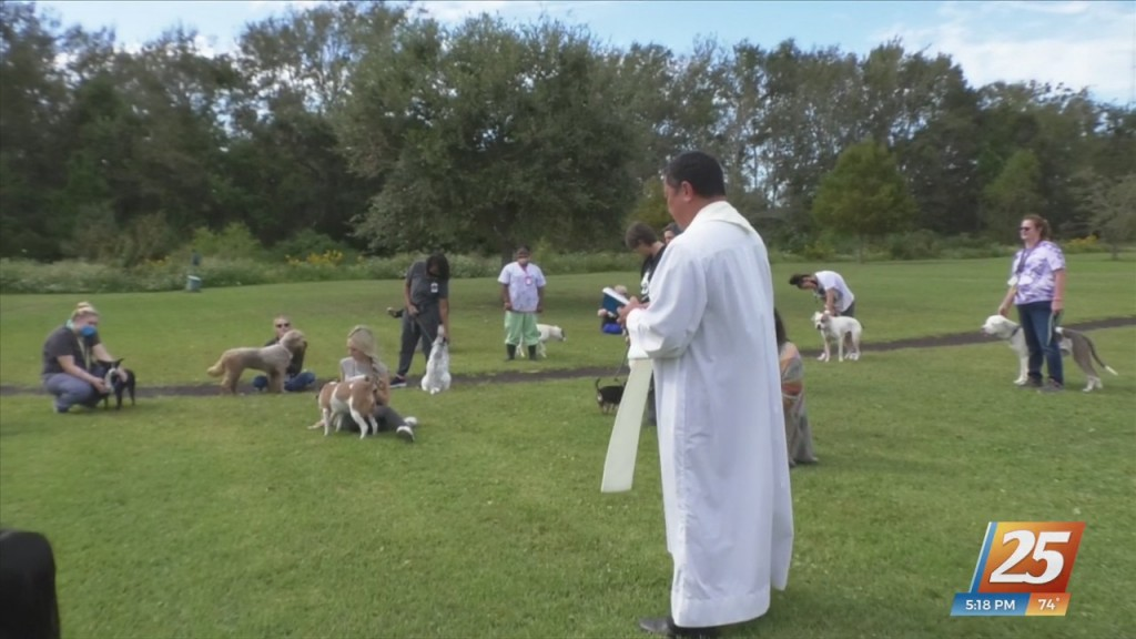 Humane Society Of South Mississippi Holds Blessing Of The Pets Ceremony