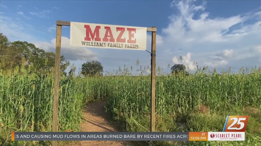 Williams Family Farm In Wiggins Offering Fall Festivities