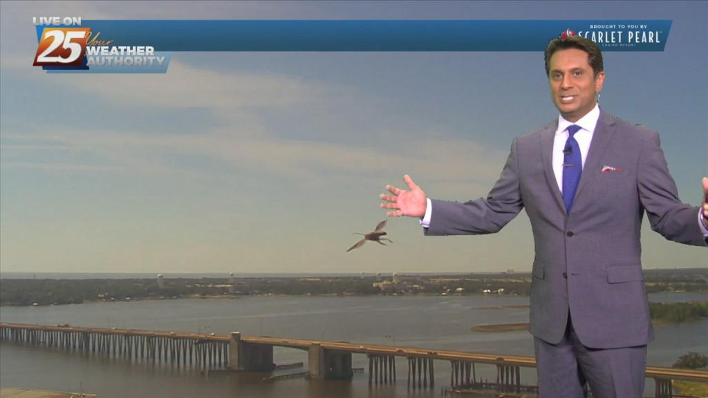 """10/19 Rob Knight's """"warmer"""" Afternoon Forecast"""