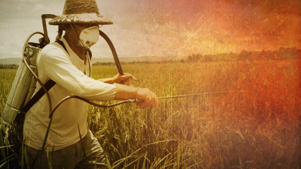 UPDATE: Trump's EPA rejects ban on common pesticide