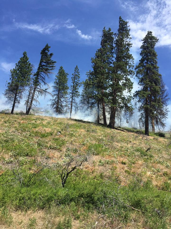 Nine families displaced, HWY 10 closed due to wild fire in Kittitas County