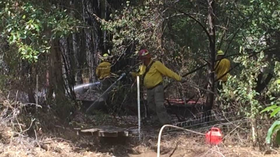 The Naches Fire Department is investigating the cause of a brush fire