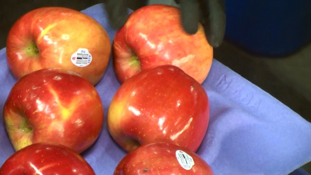 Broetje Orchards: homegrown family business expanding