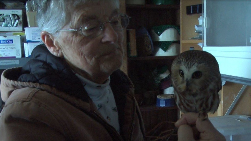 Rehab centers are scarce for injured animals in Eastern Oregon, Washington