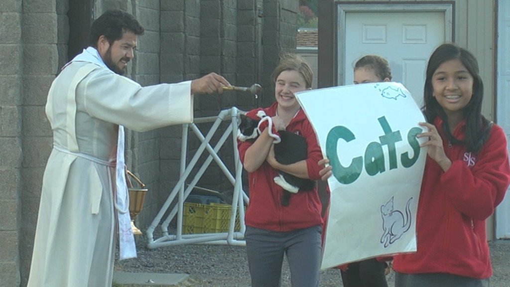 """Kennewick church hosts """"Blessing of the Pets"""" event"""