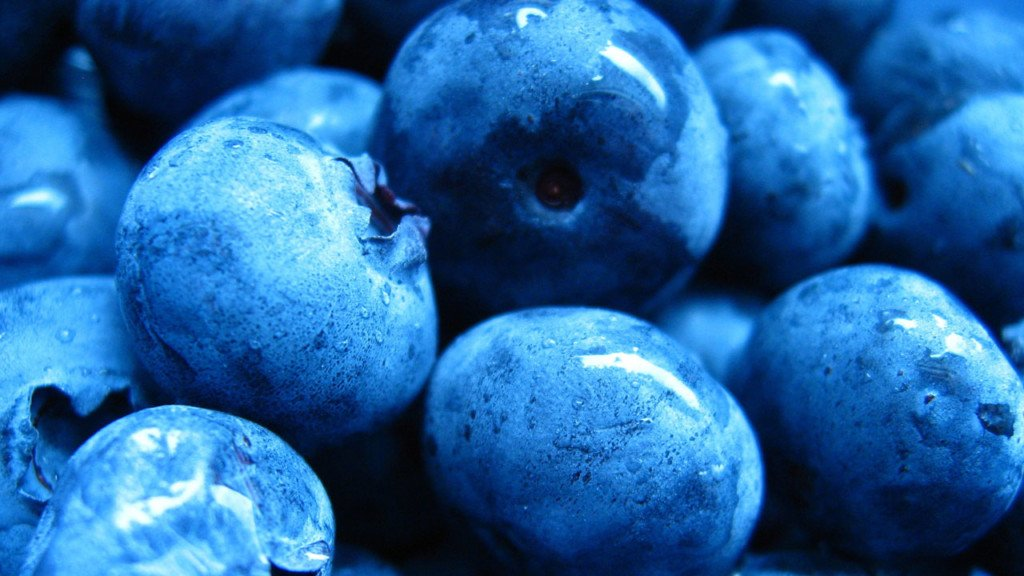 No blueberry wage hike for now, judge sides with Selah's Zirkle Fruit Co.