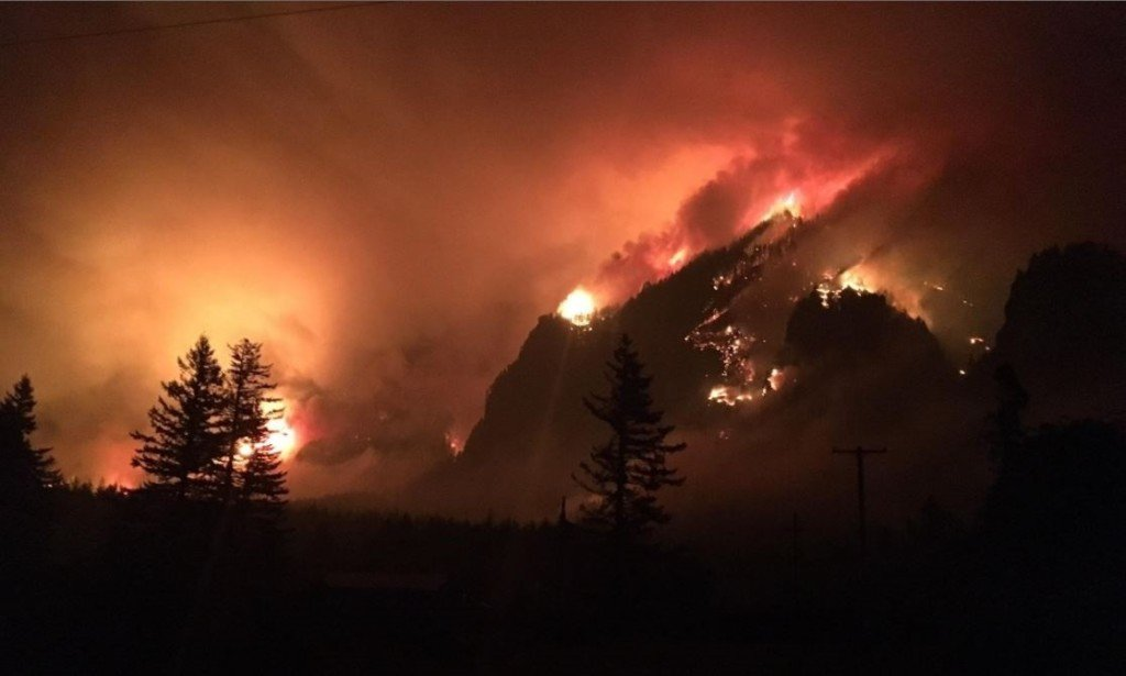 ODOT: 2,000 burned trees must fall before I-84 reopens