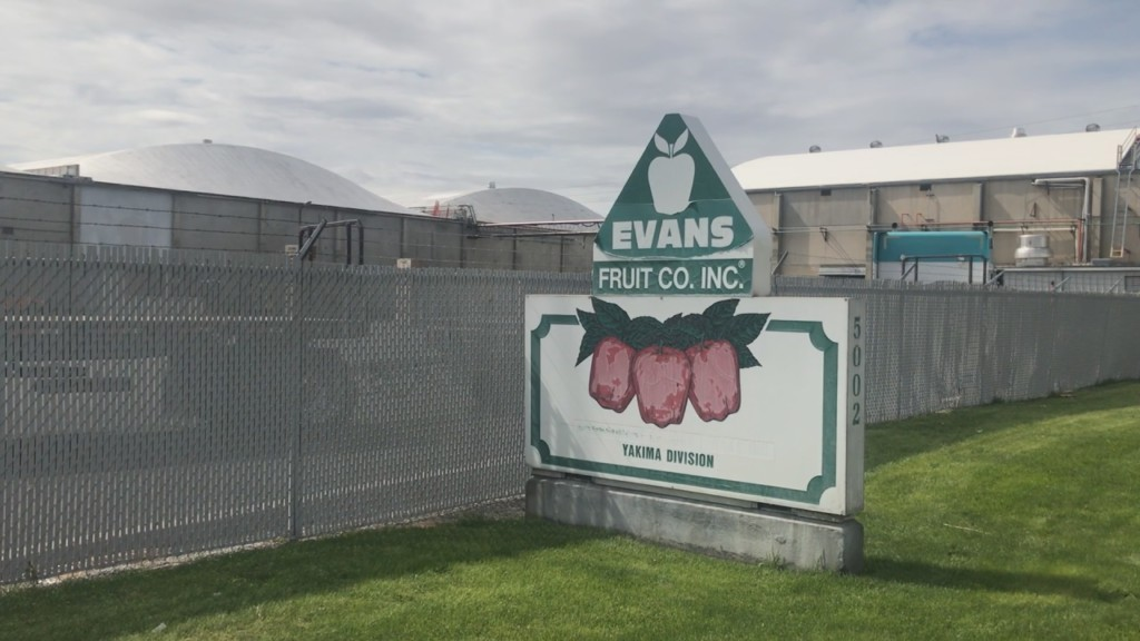 Washington apple farms sue federal government over unexpected wage hikes