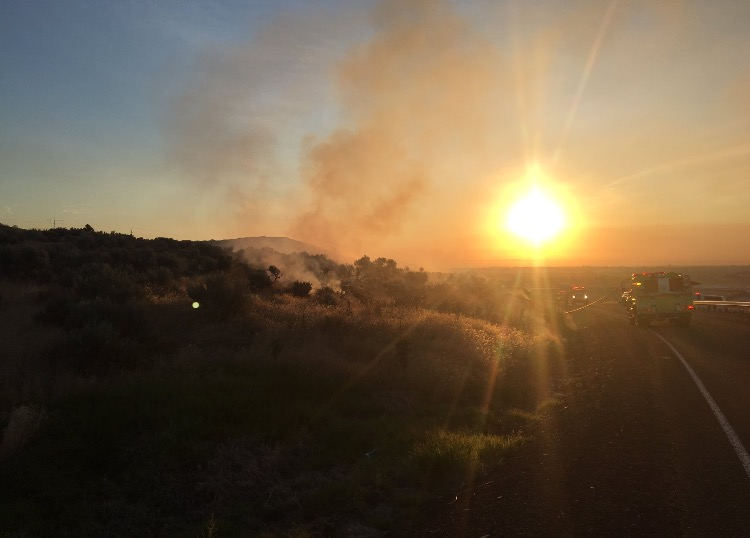 Suspicious start to early morning brush fire