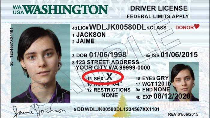 Gender 'X' option now available on Washington licenses, permits and ID cards