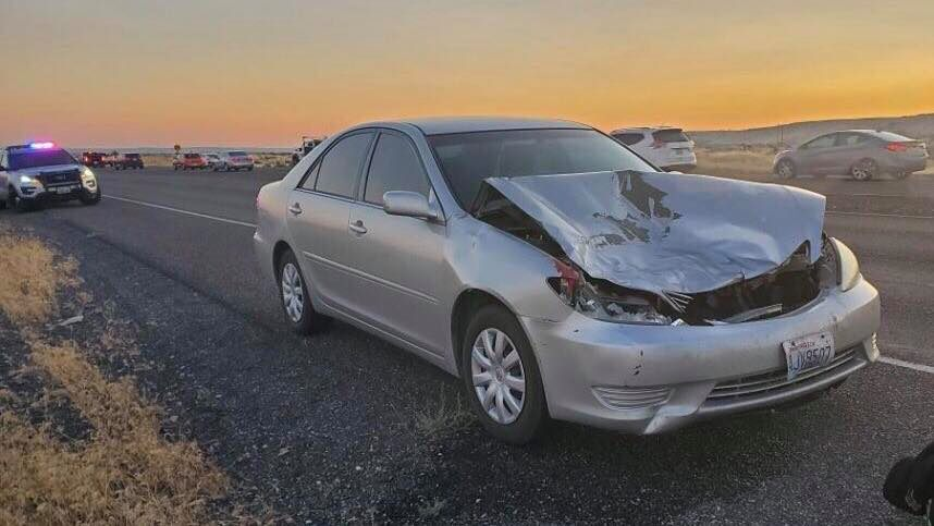 Deer cause several crashes in Hanford area early Thursday