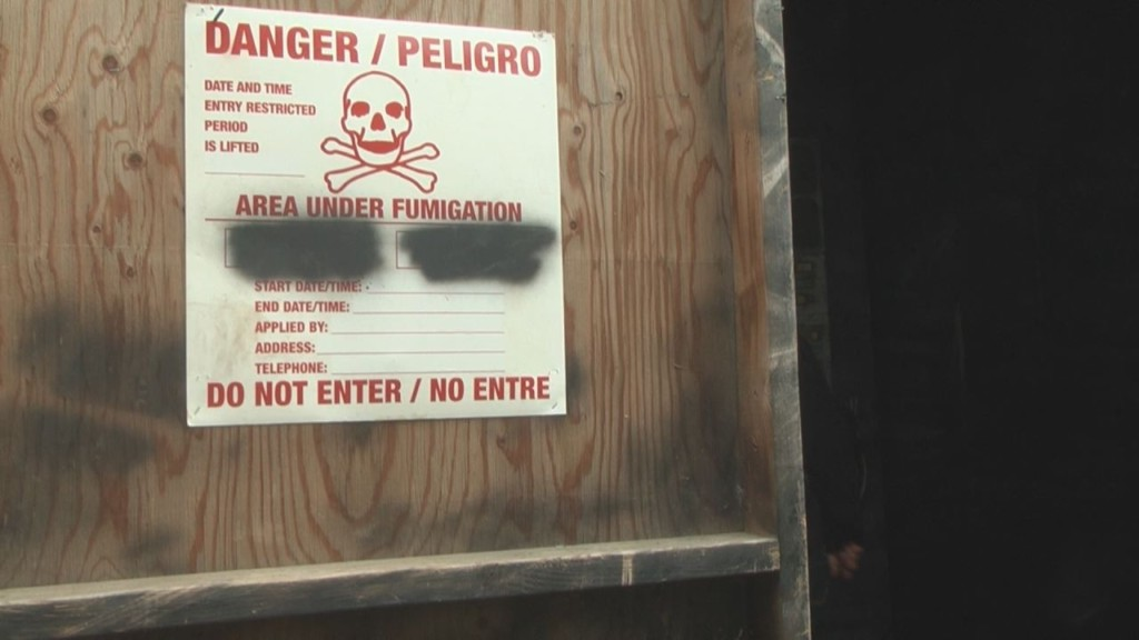 'Beware the evil within:' Pasco Jaycee Haunted Forest opens Saturday night