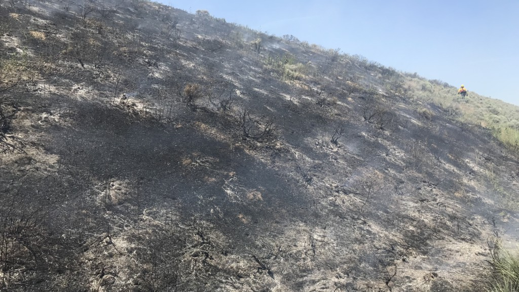 Two fires spark on I-82 near Kennewick, possibly started by vehicle