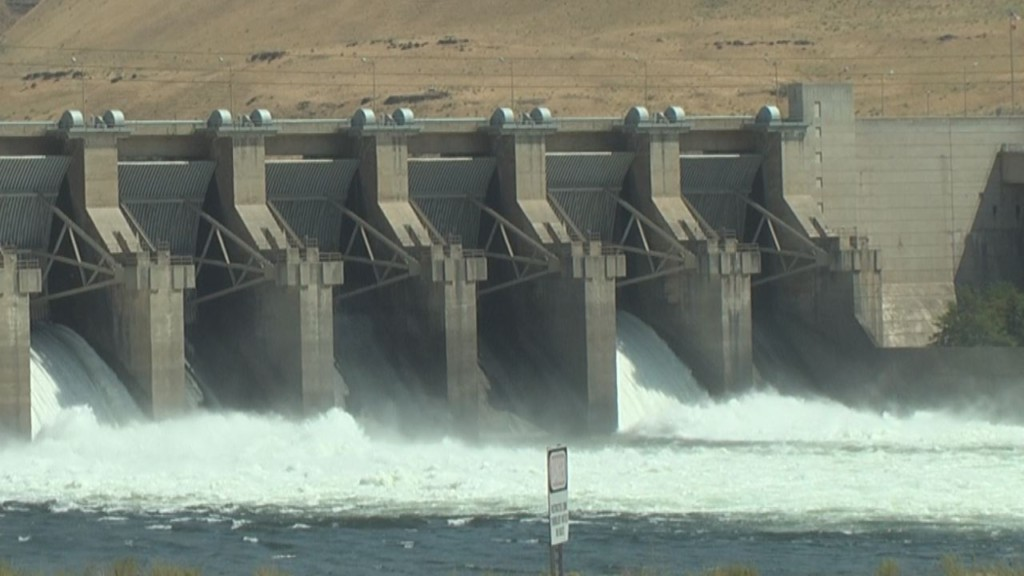 Washington Policy Center releases results of statewide poll on Snake River dams