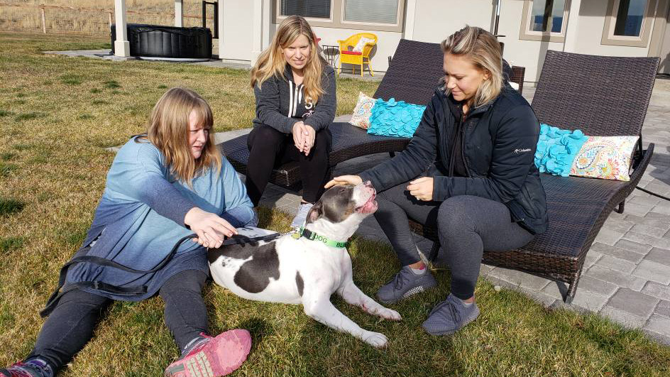 Petey the dog adopted more than a year after he was left for dead in West Richland
