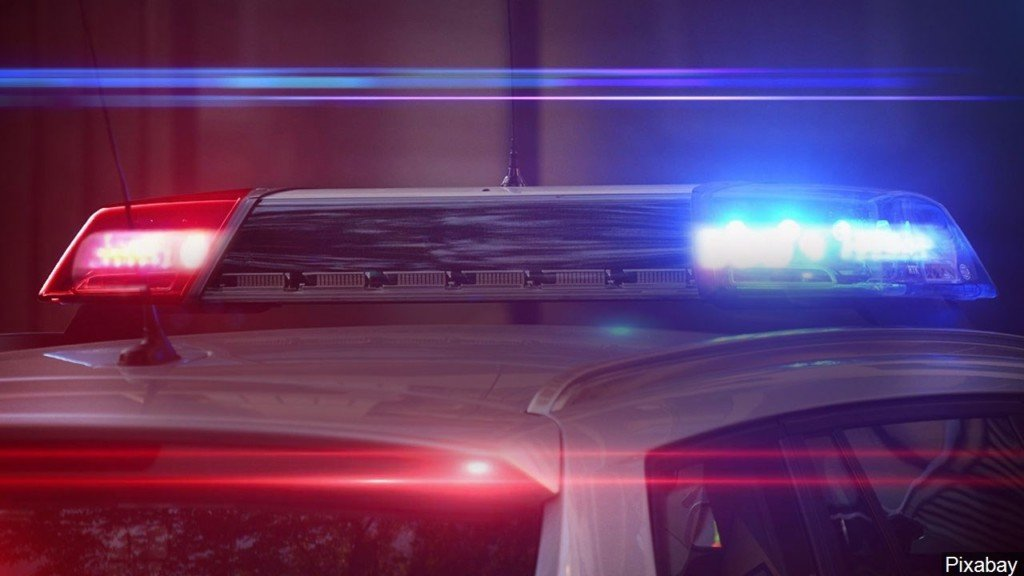 Pit bull killed, husky injured by gunfire in Finley