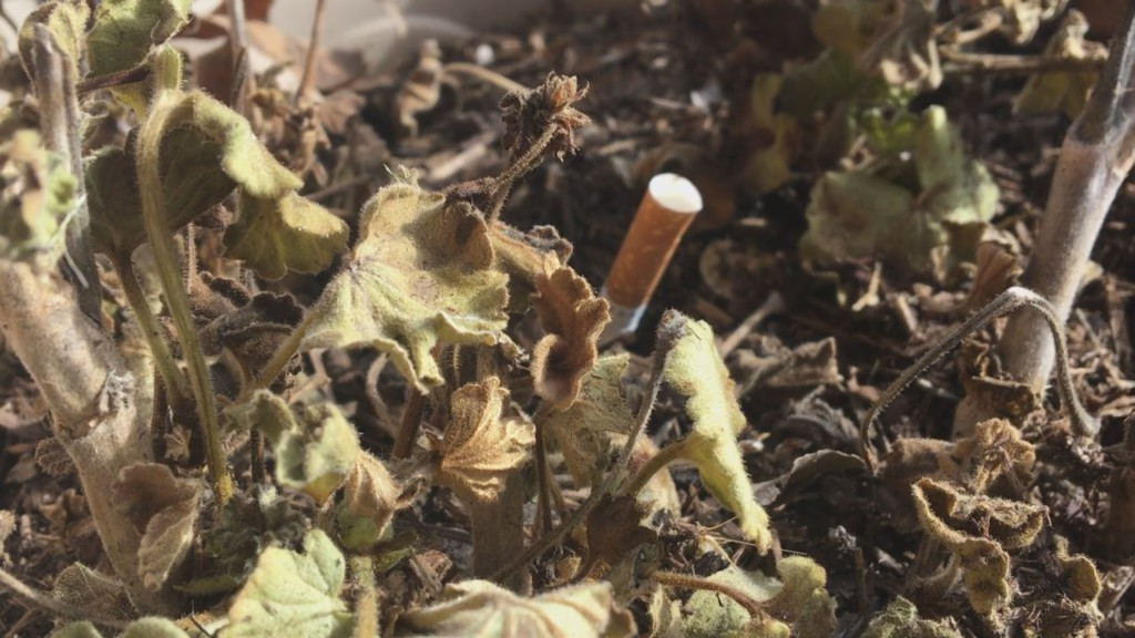 Firefighters see increase in potting soil fires