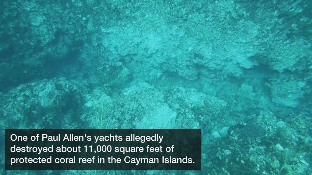 Microsoft cofounder's yacht allegedly destroyed a coral reef