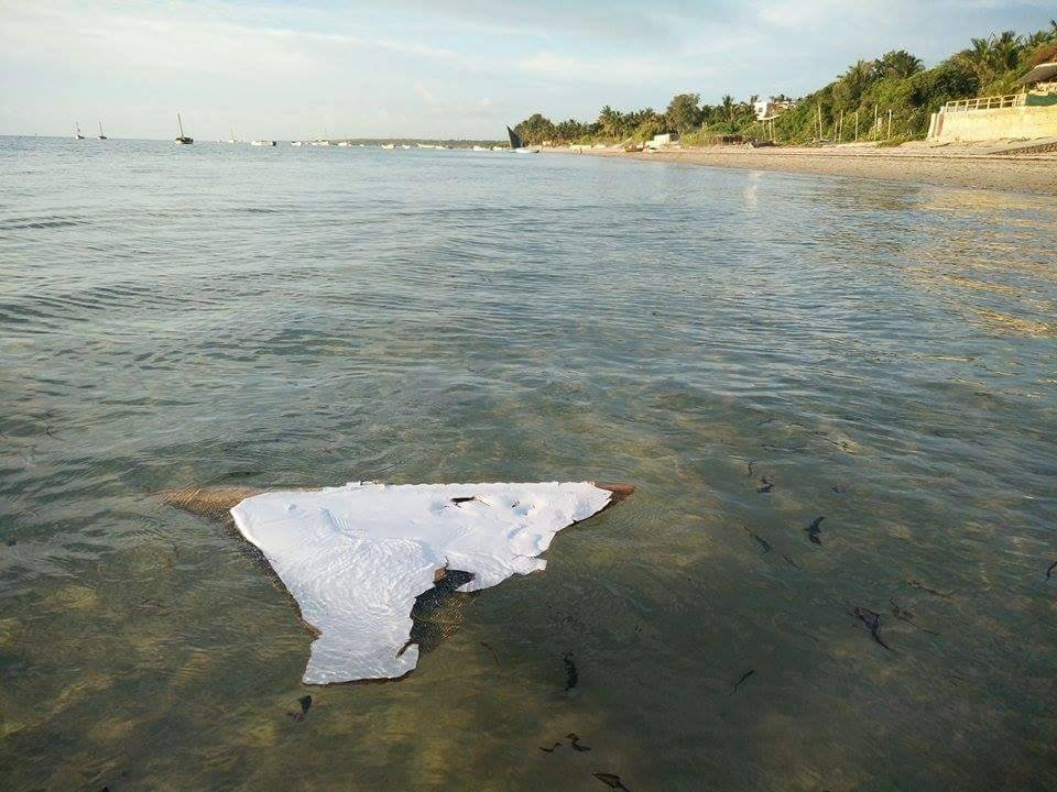 MH370: Likely piece of doomed plane found, U.S. official says
