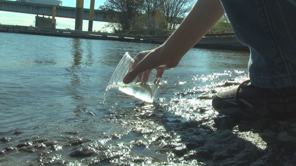 Students release baby fry at 2017 Salmon Summit