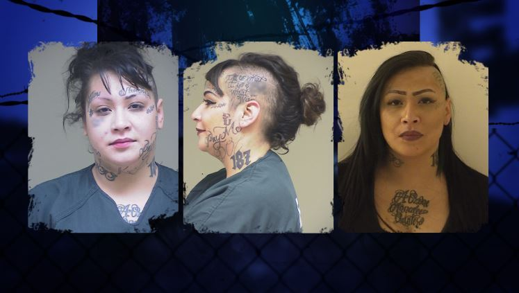Artemisa Sanchez: Wanted heavily-tattooed High-Violent Offender stands out in crowd